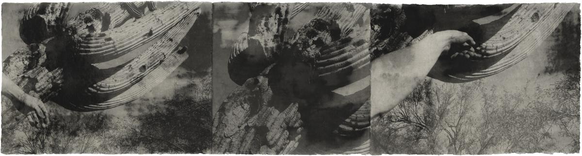 American Desert III Self 96-06.jpg