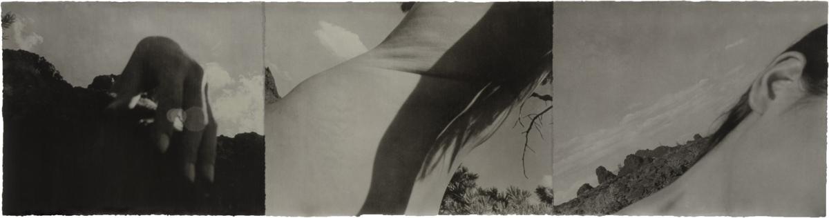 American Desert III Self 94-24.jpg