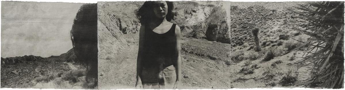 American Desert III Self 94-37.jpg