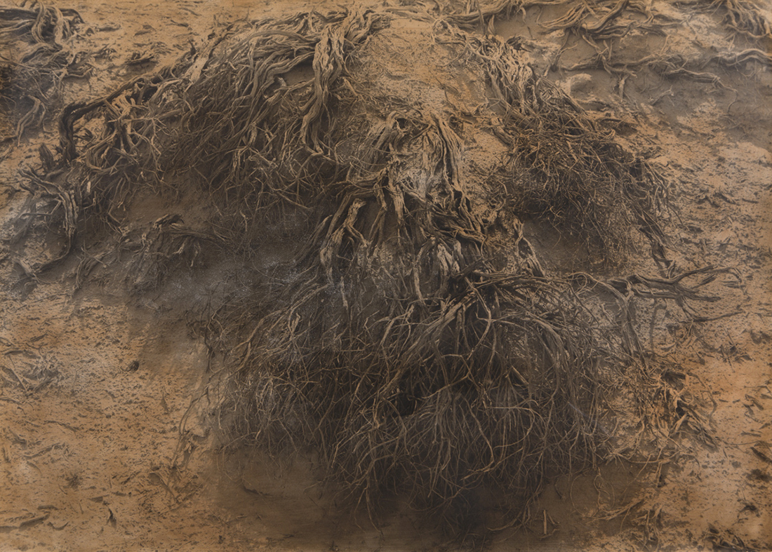 American Desert II 94-28.jpg