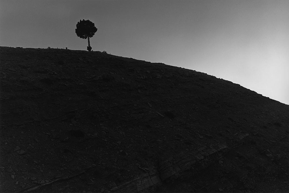 Desert 02-45.jpg