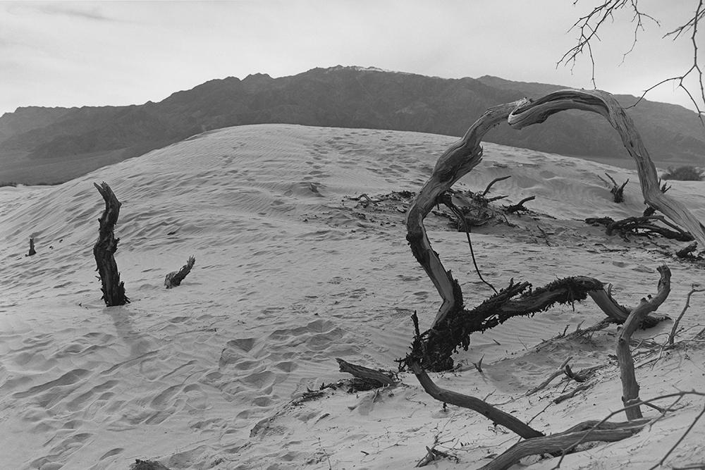Desert 02-43.jpg