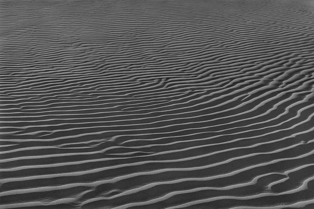 Desert 02-55.jpg