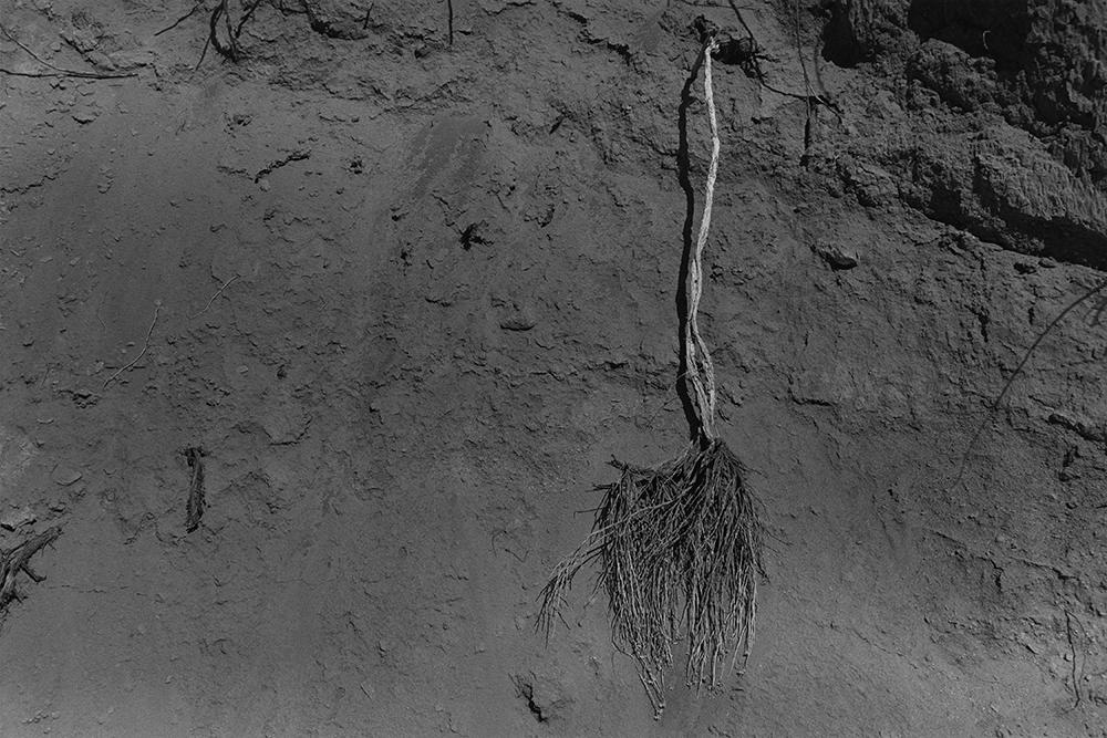 Desert 02-63.jpg