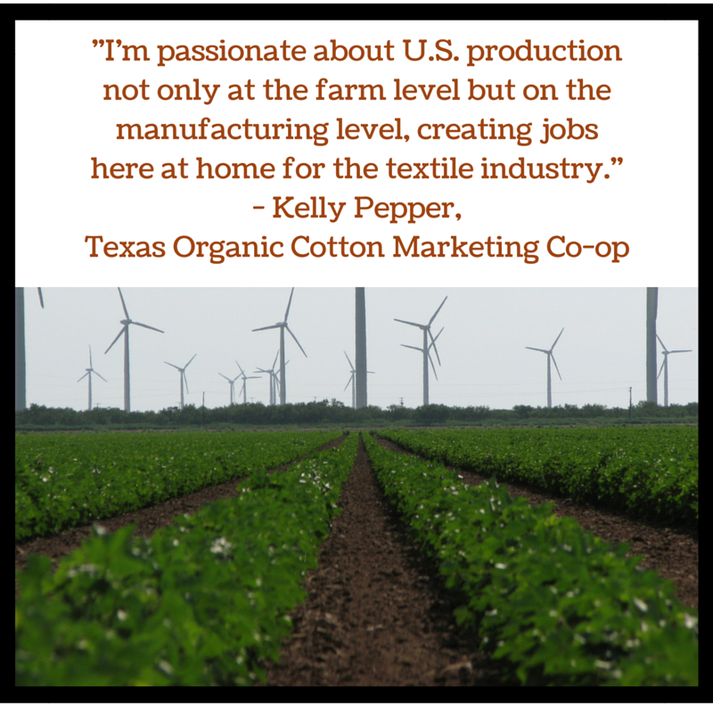 Texas Organic Cotton fields and windmills