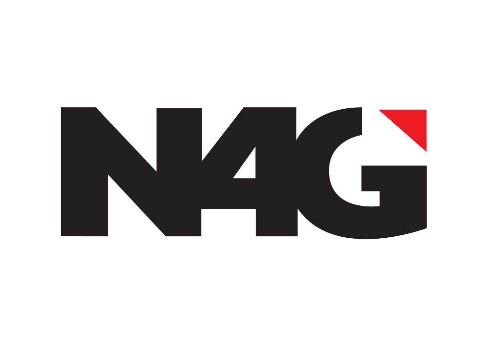 N4G logo.PNG