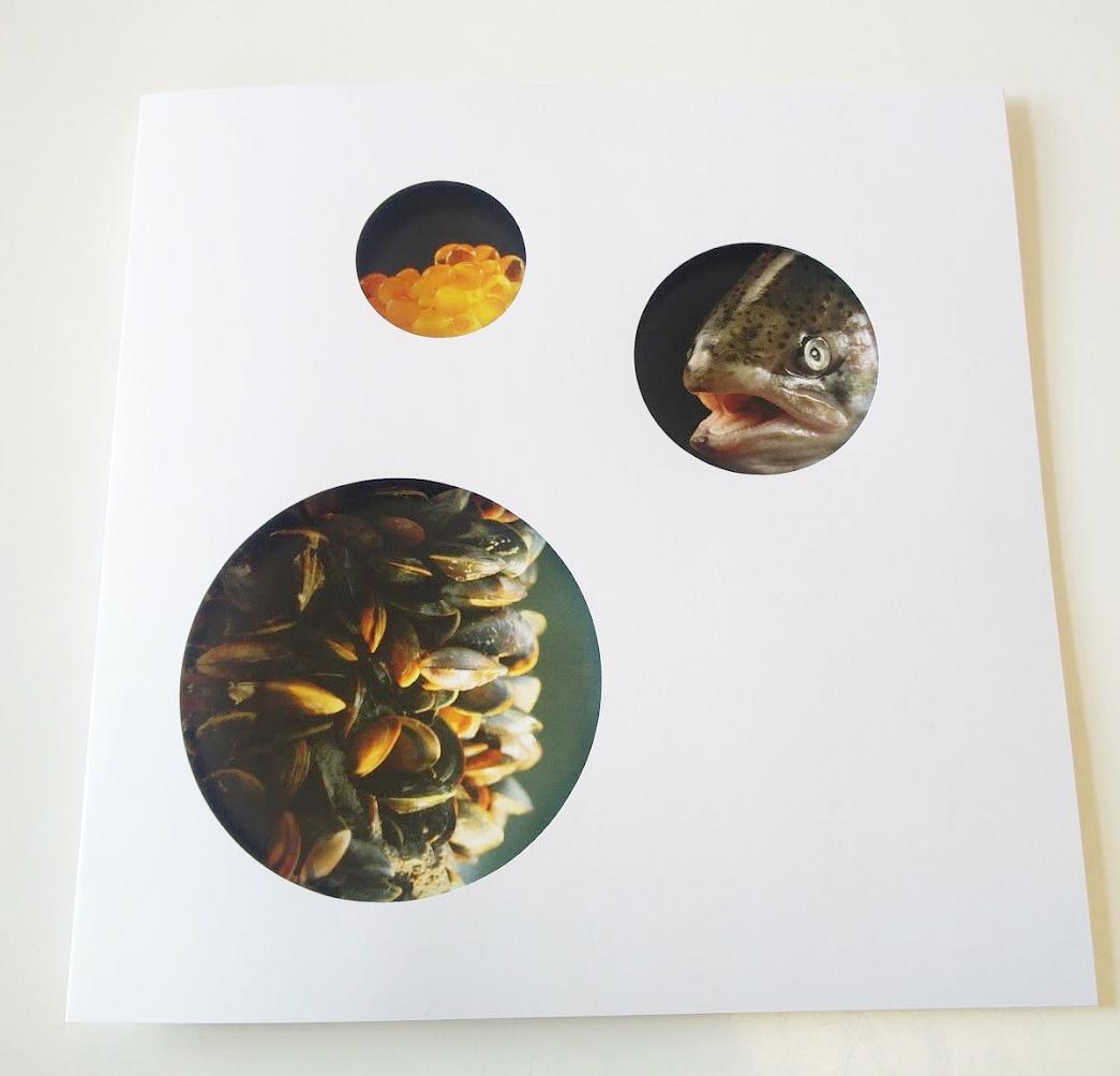 Økofisk Brochure, 2017
