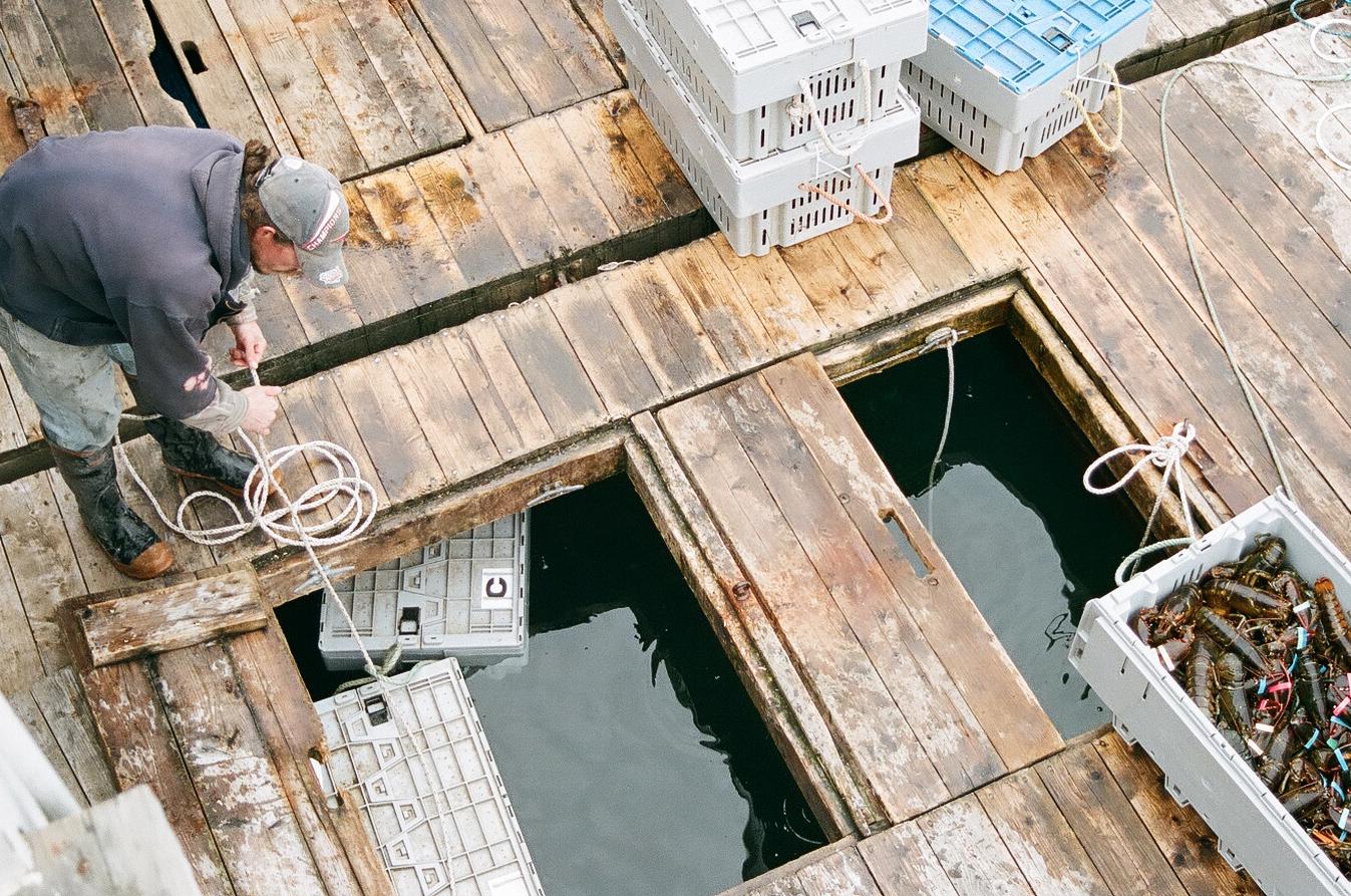 working-waterfront.jpg