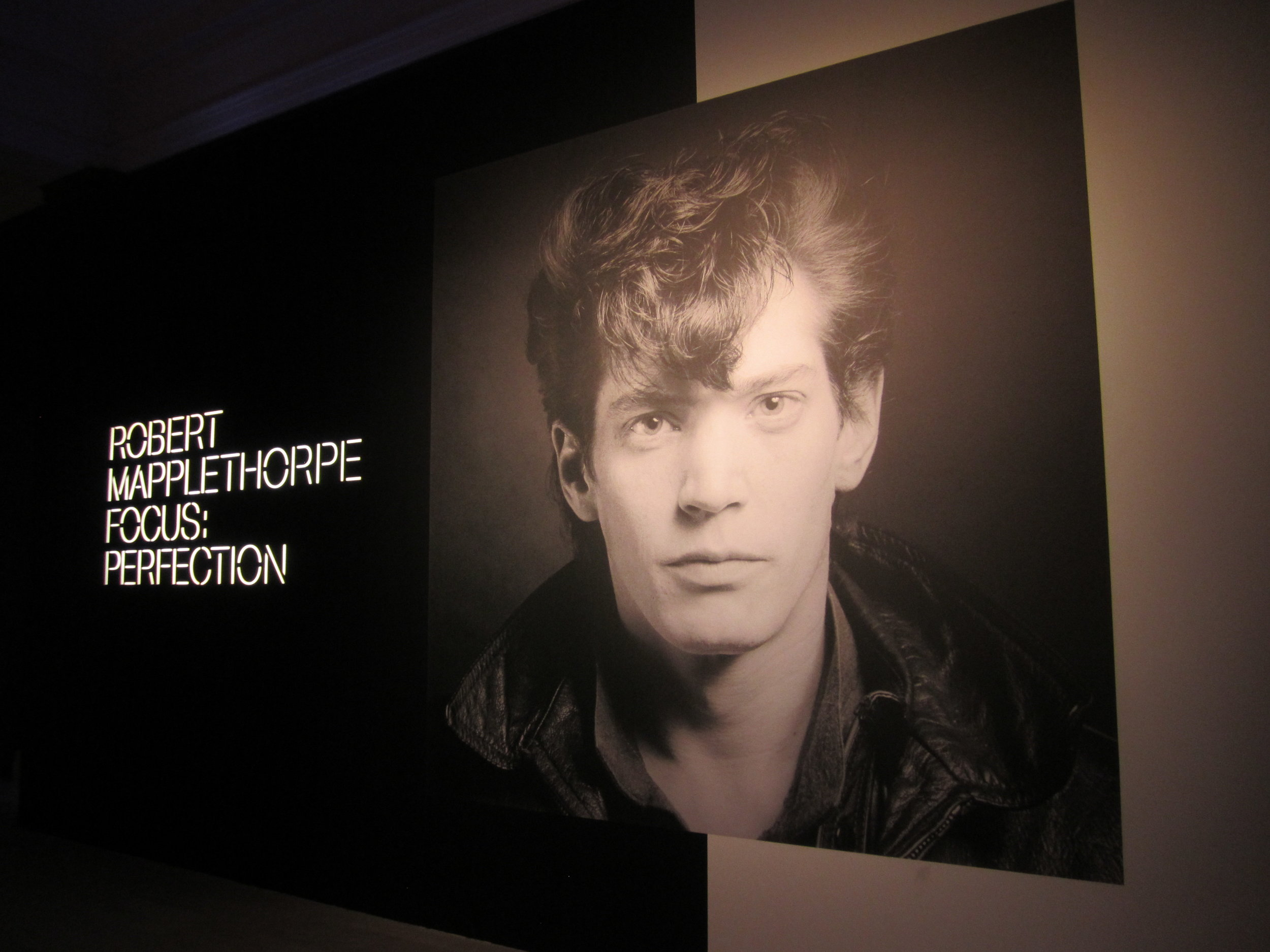 from  Robert Mapplethorpe Focus: Perfection  at the MMFA