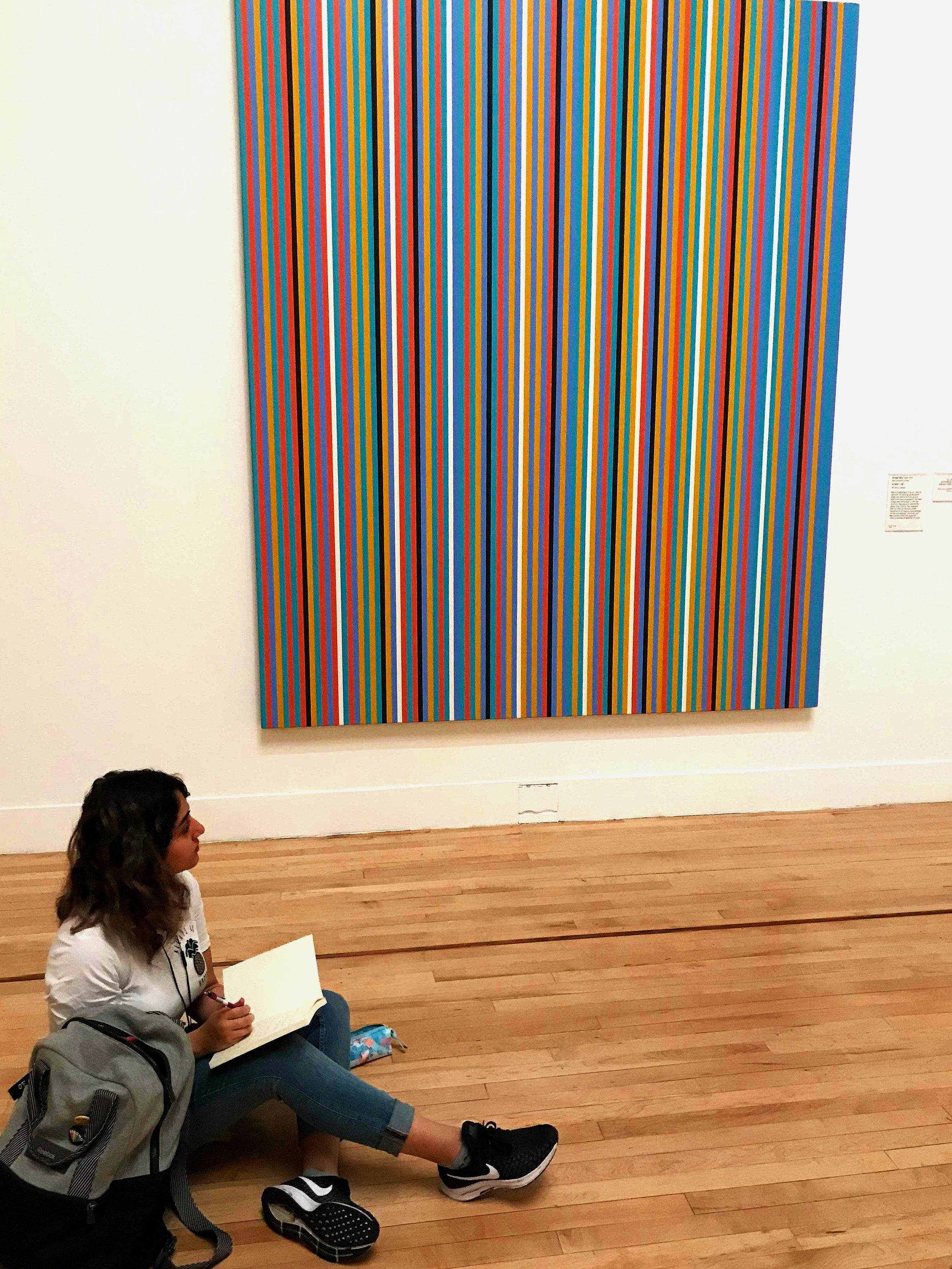 Meet field school blogger Lily, spotted here enjoying her first engagement with one of her assigned artists, Bridget Riley, at the Tate Britain.
