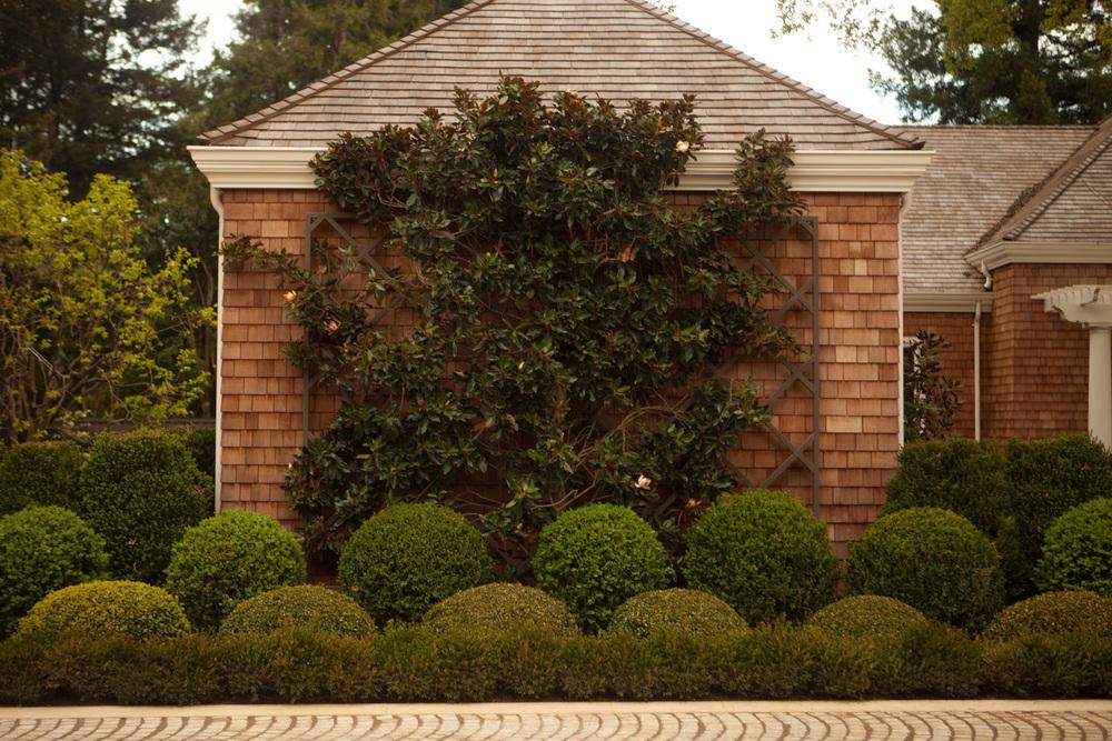 GardenDesignerHillsborough.jpg