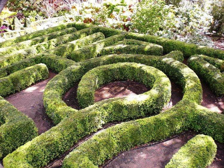 07_Woodside_GardenDesign.jpg