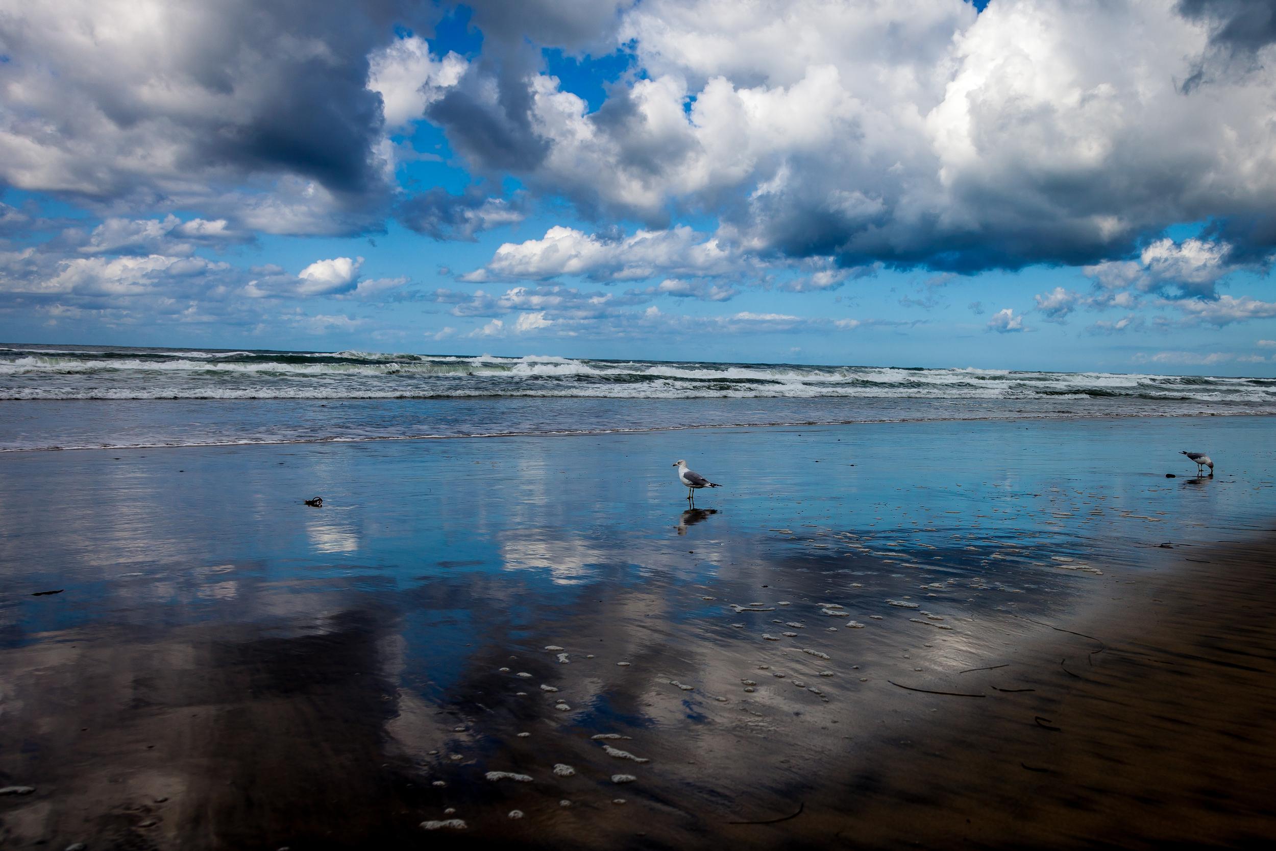 Delmar Beach-4.jpg