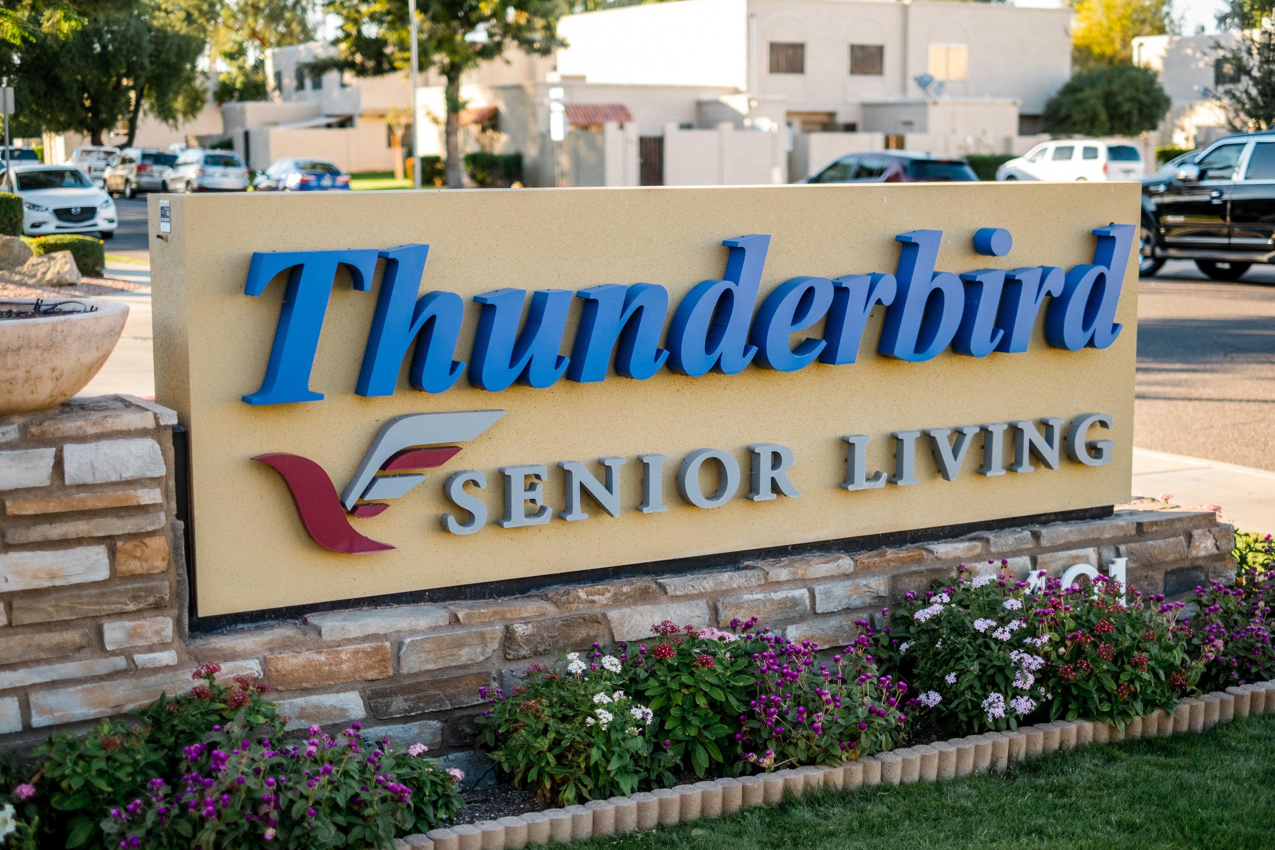 Thunderbird-115946.jpg