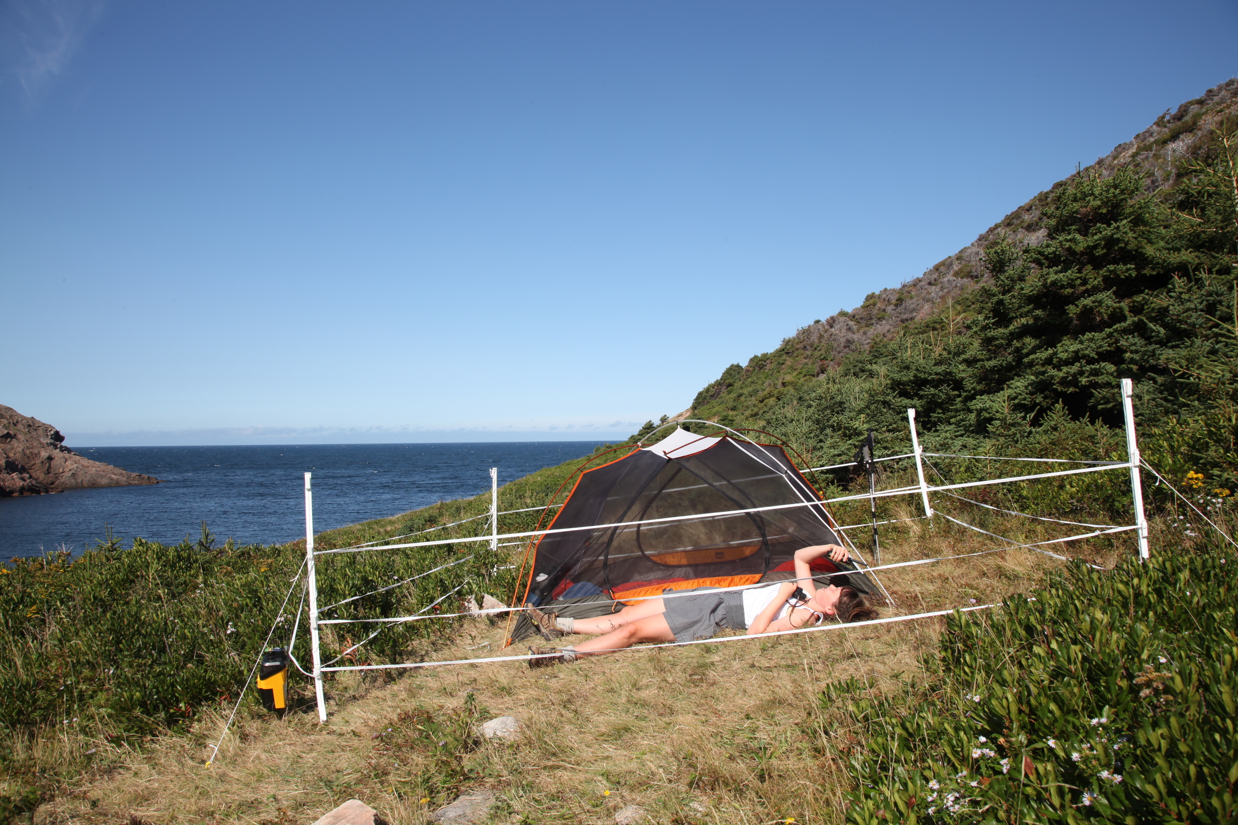"Protect Your Love, Cape Breton Highlands Site , C-Print, 16"" x 24"", 2012"