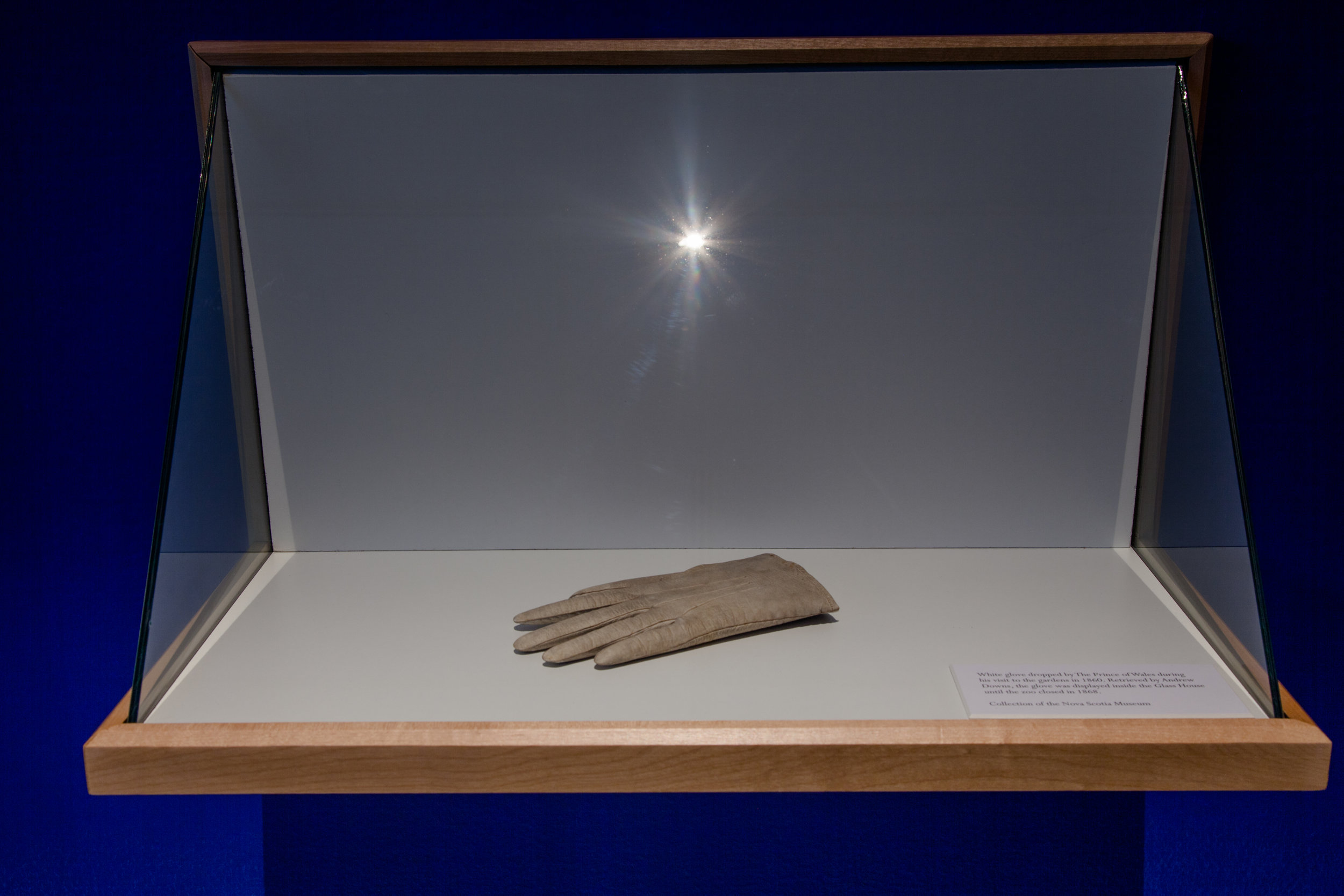 White glove dropped by The Prince of Wales during his visit to the gardens in 1860. Retrieved by Andrew Downs, the glove was displayed inside the  Glass House  until the zoo closed in 1868. (Collection of the Nova Scotia Museum)