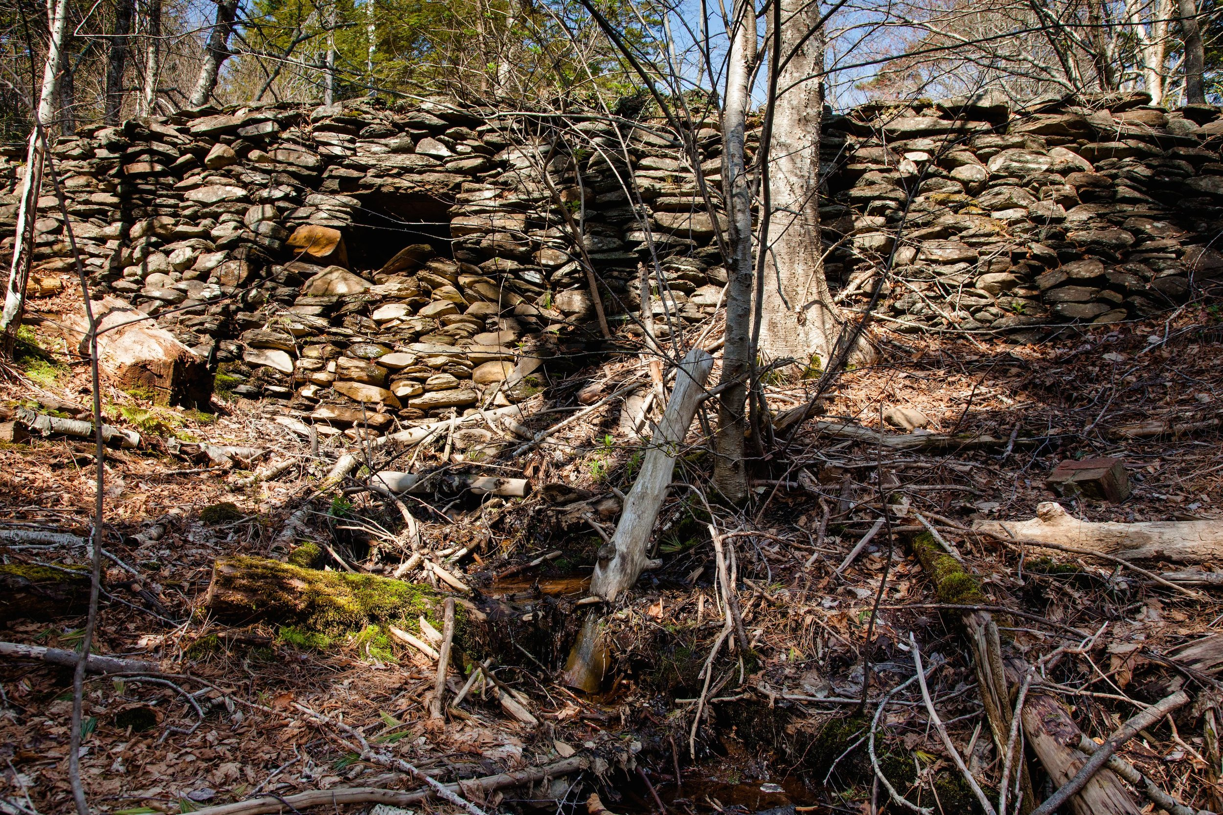The ruins of the polar bear pit of Downs' Zoological Gardens, documented in Halifax, Spring 2015.