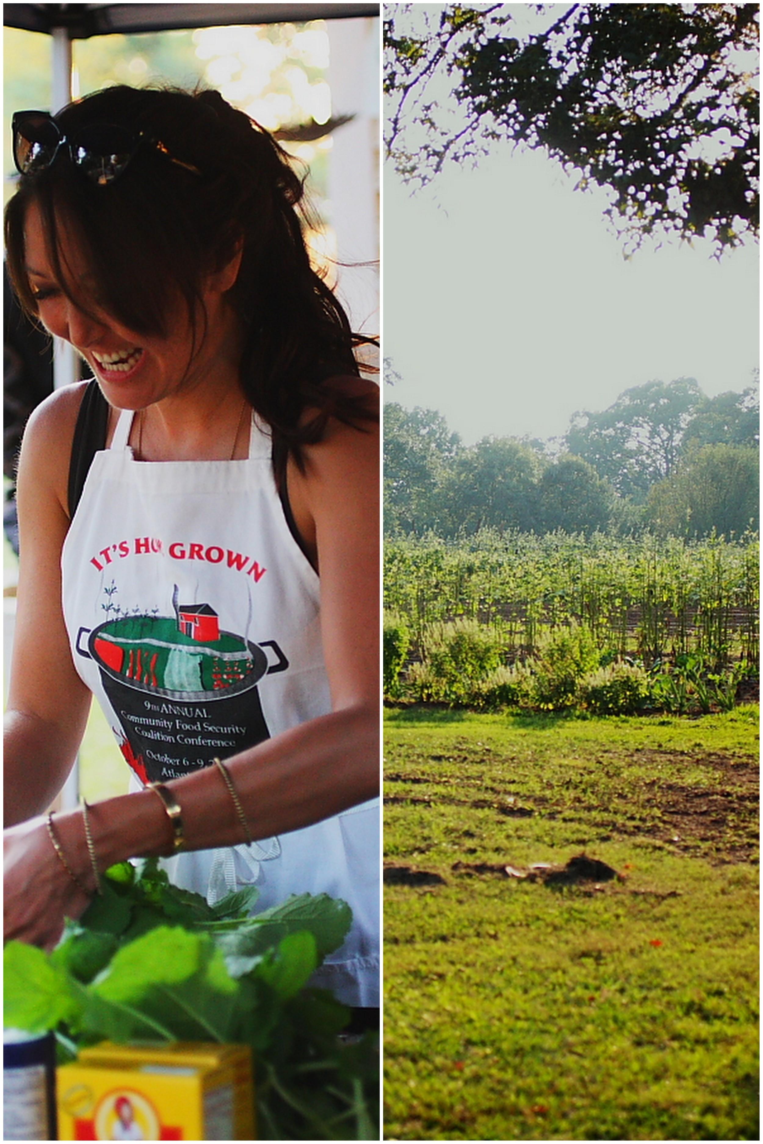 community urban farm.jpg