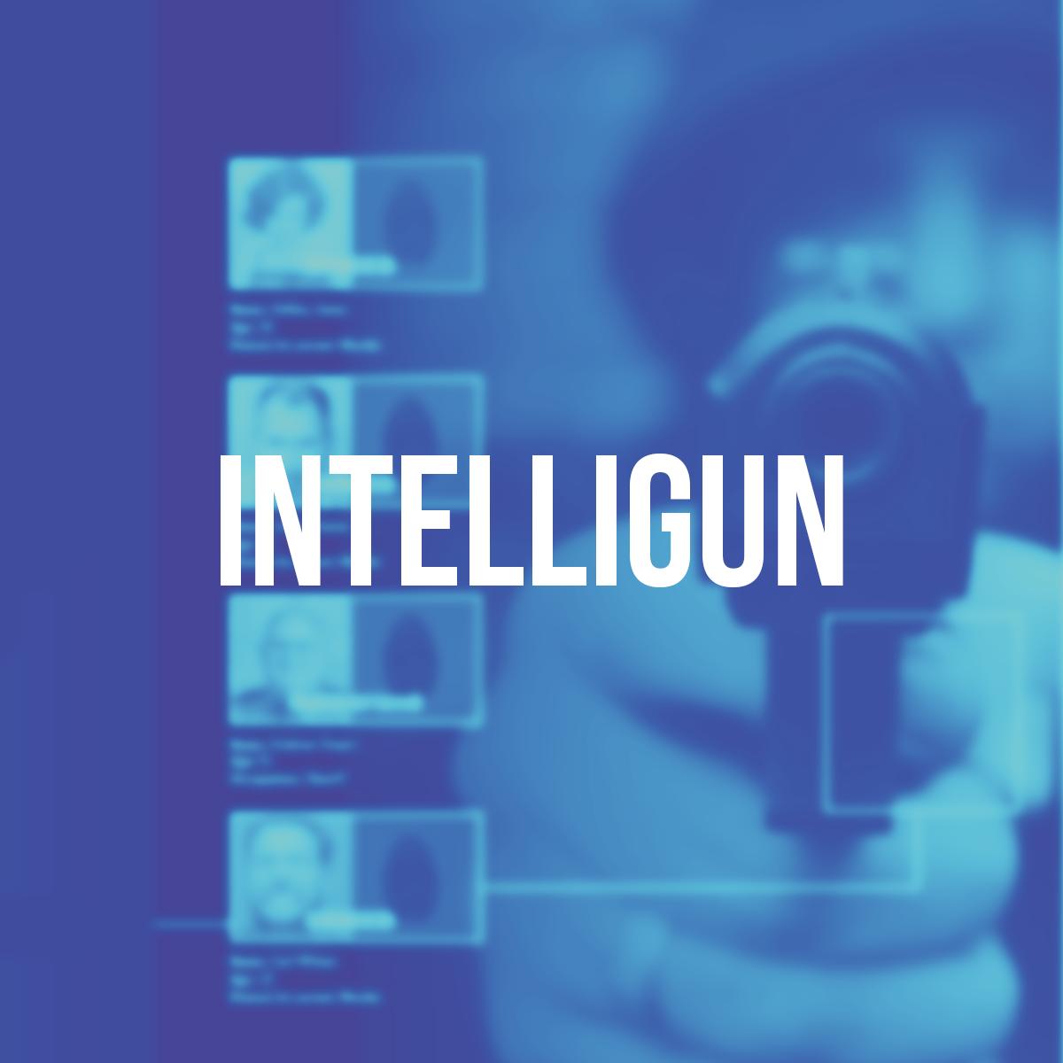 Intelligun - Advertising / Print