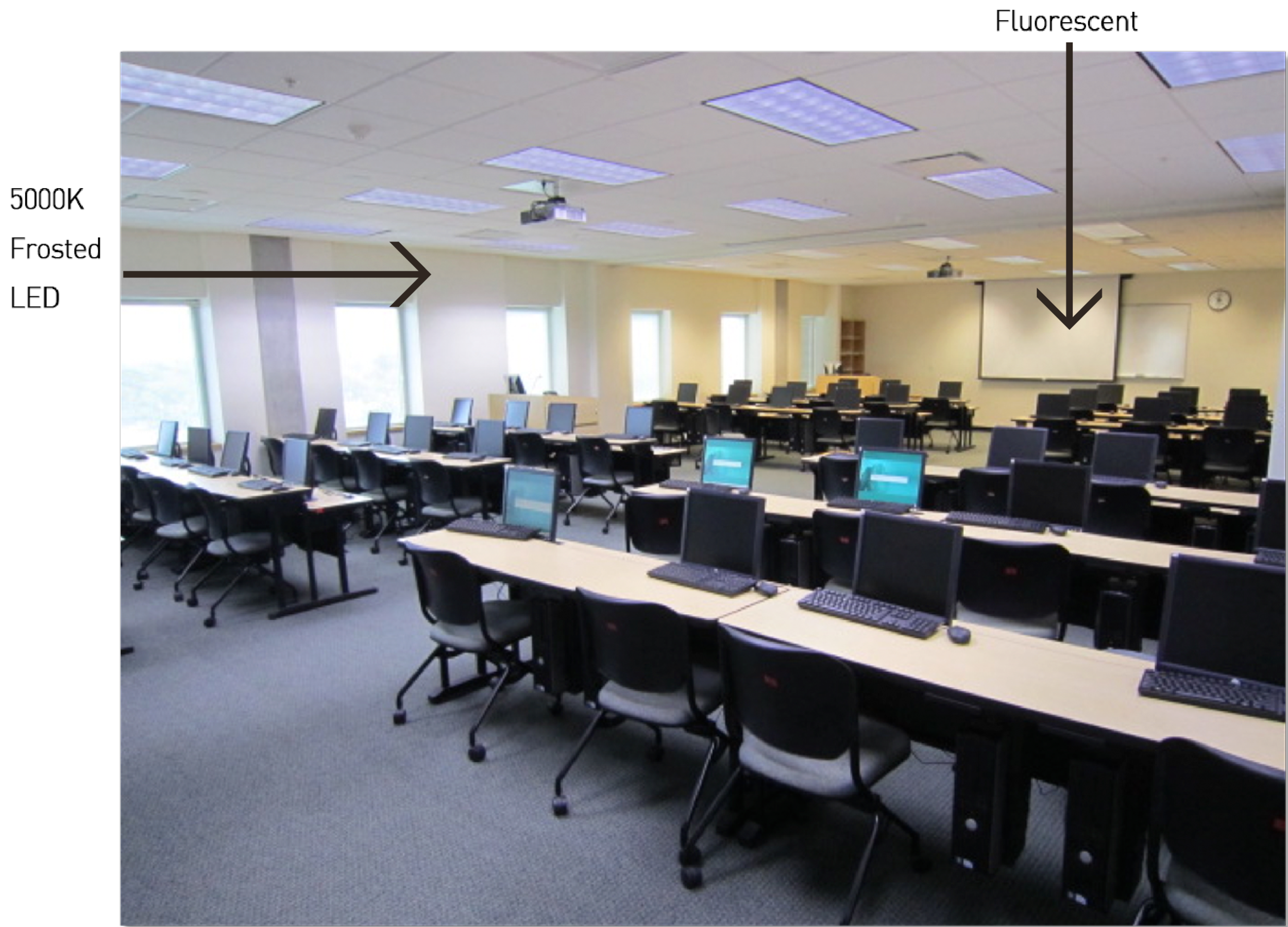 Replaced   45 four ft.  fluorescent tubes   with   5  0  00K   Frosted   LED tubes.