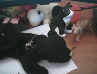 Panthers at my desk