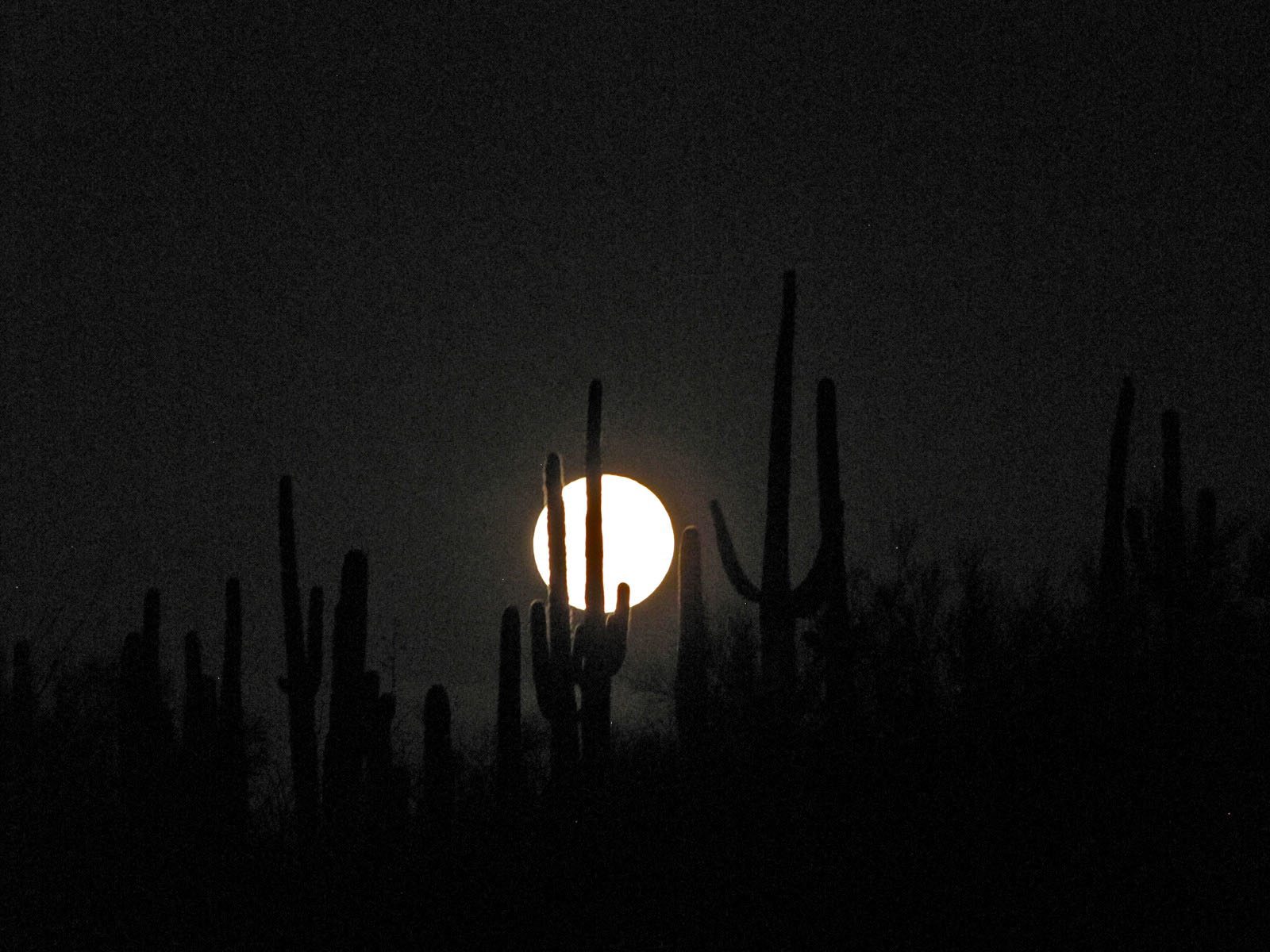 supermoon in desert.jpg