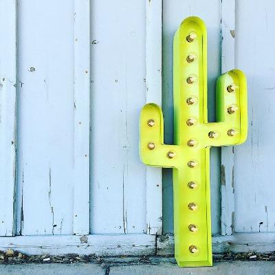 lime green cactus.jpg