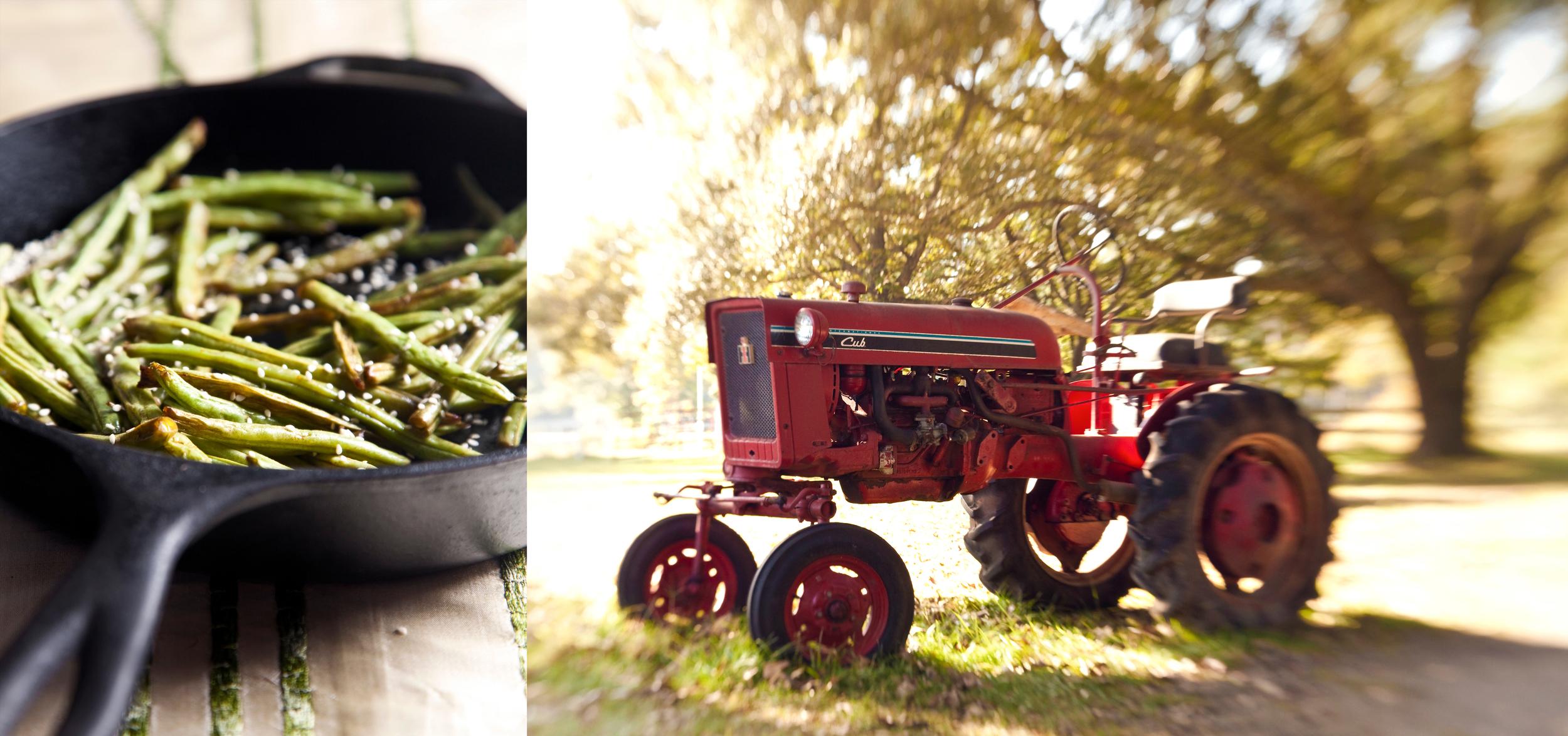 farm fresh food photography