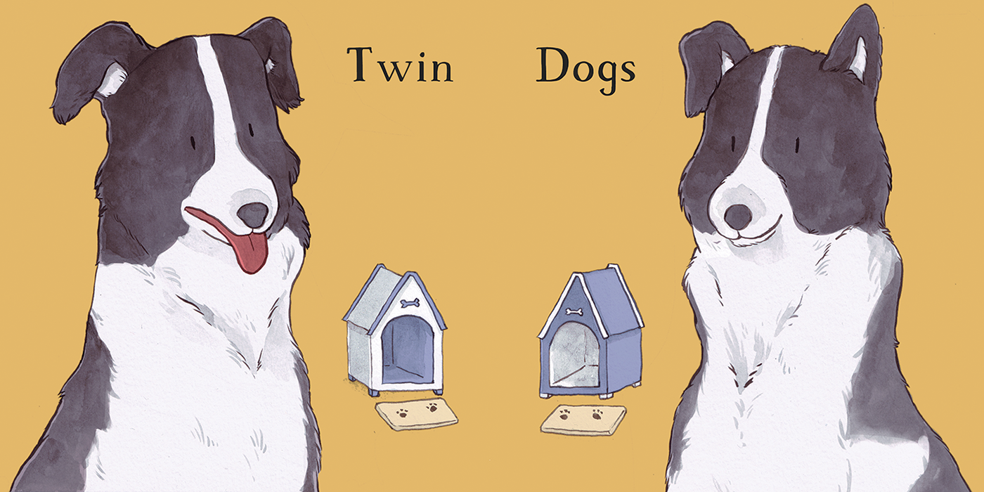 9 twin.png