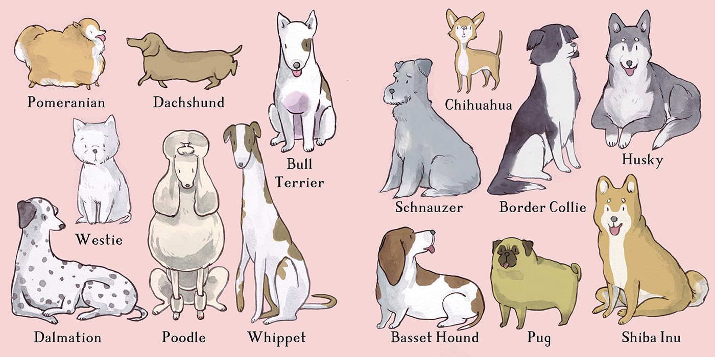 12 breeds.png