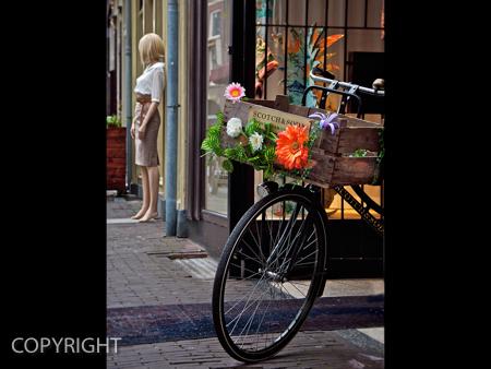AMSTERDAM STREET by Stephen Miller.jpg