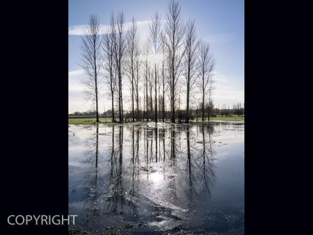 WATERWORLD by David Phillips.jpg