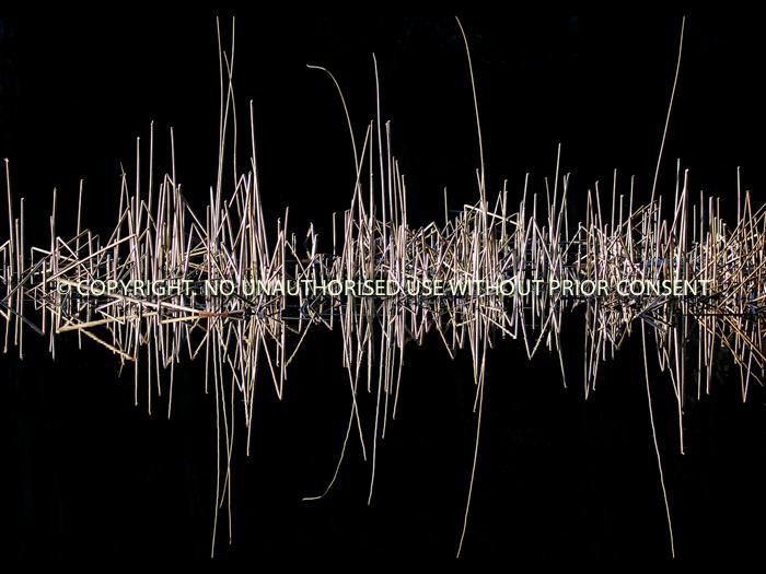 REEDMOMETER by Neil Schofield.jpg