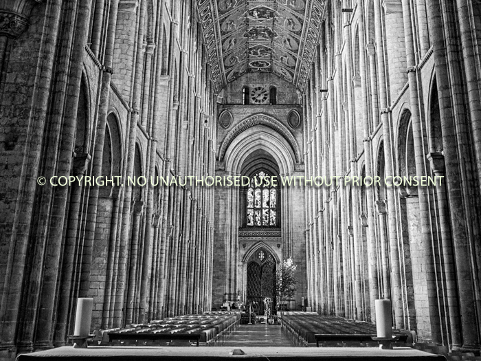 ELY CATHEDRAL by Rory Morrison.jpg