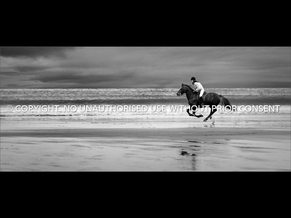 BOXING DAY GALLOP by Jonathan Vaines.jpg