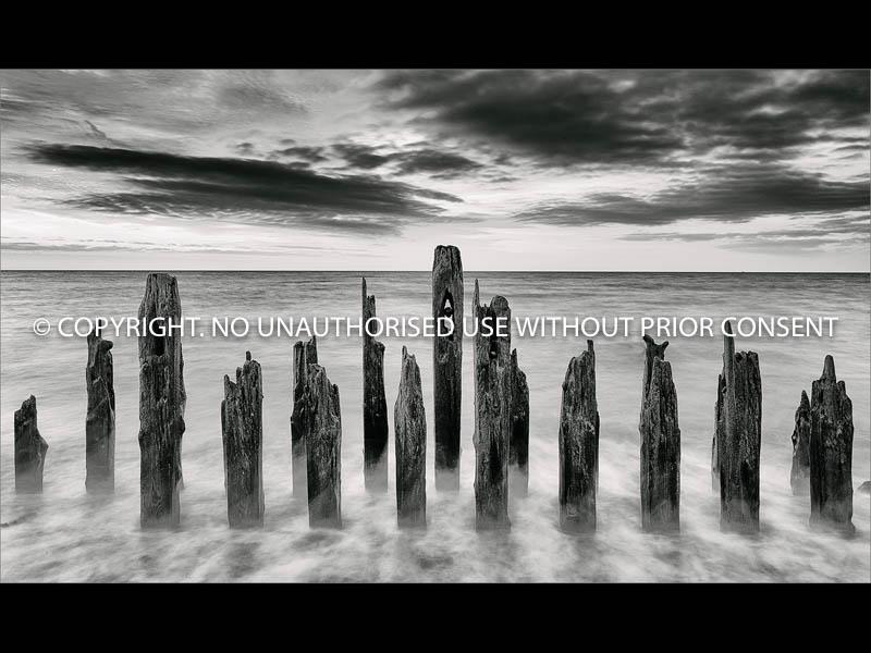 GROYNES by Jamie White.jpg