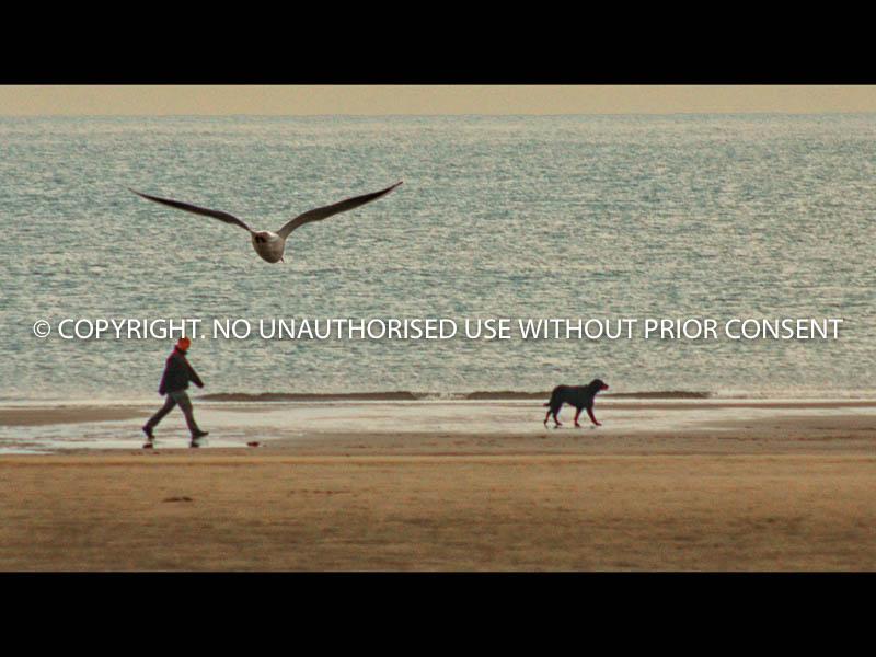ON THE BEACH by Ian Mellor.jpg