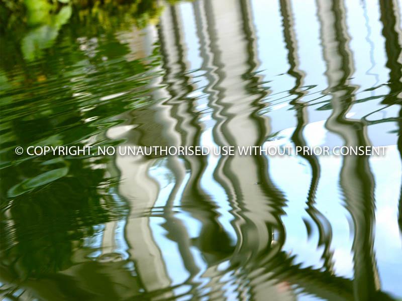WATER REFLECTIONS by U Gavin.jpg