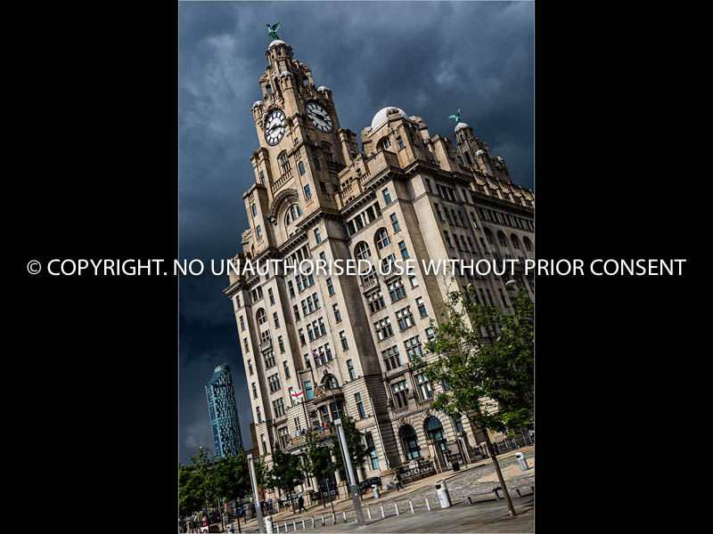 THE LIVER BUILDING by Simon Raynor.jpg