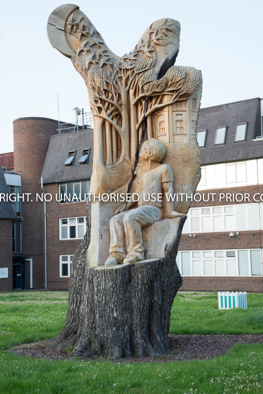OU SCULPTURE by Peter Fortune.jpg