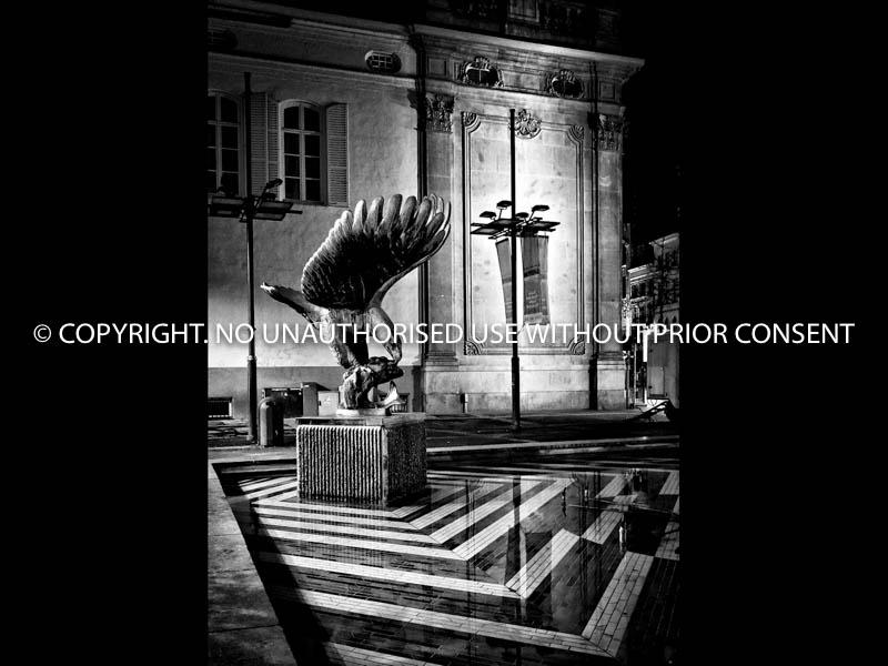 NIGHT FEEDER by Neil Schofield.jpg