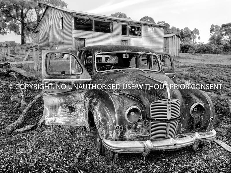 DOWN AT THE OLD SHEARING SHED by David Manning.jpg