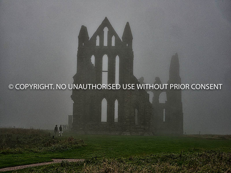 WHITBY ABBEY IN MIST by Peter Fortune.jpg
