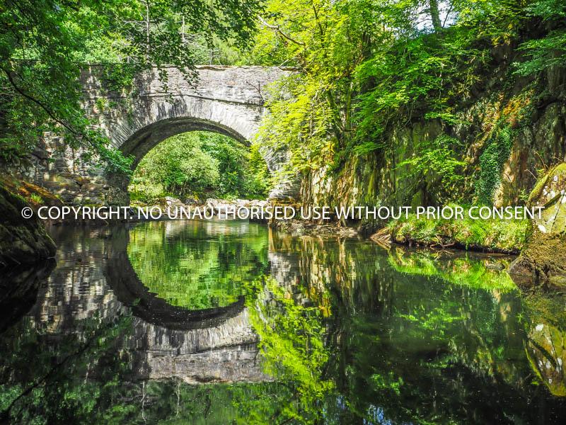 REFLECTIONS ON WATER by U Gavin.jpg