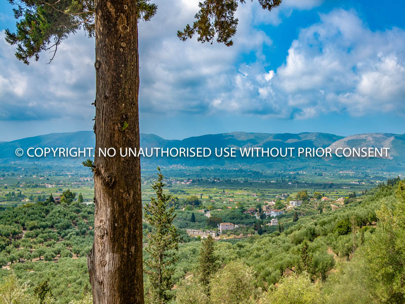 ZAKYNTHOS VALLEY by Peter Fortune.jpg