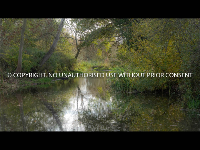 THE RIVER AT FLATFORD MILL by Sue Martin.jpg