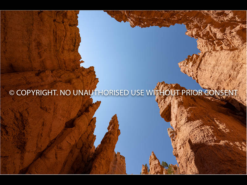 BRYCE CANYON by Chris Mahony.jpg