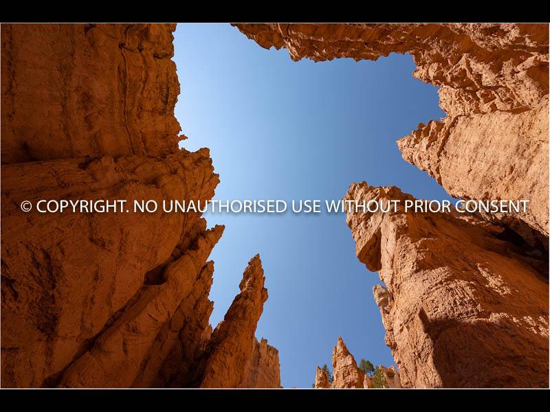 BRYCE CANYON by Chris Mahony.jpg