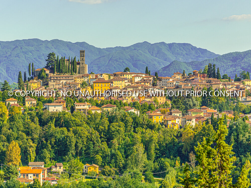 BARGA TOWN by Peter Fortune.jpg