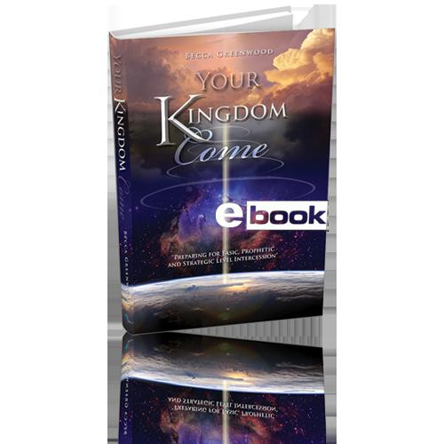 Your Kingdom Come eBook